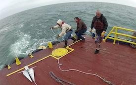 Study Uses Gulf Science Data to Analyze Water Chemistry near Deepwater Horizon