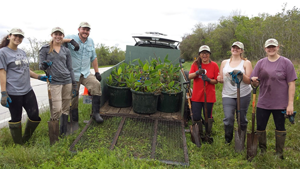 Students Get Hands-On Look At Wetland Restoration In Texas Sea Grant Internship