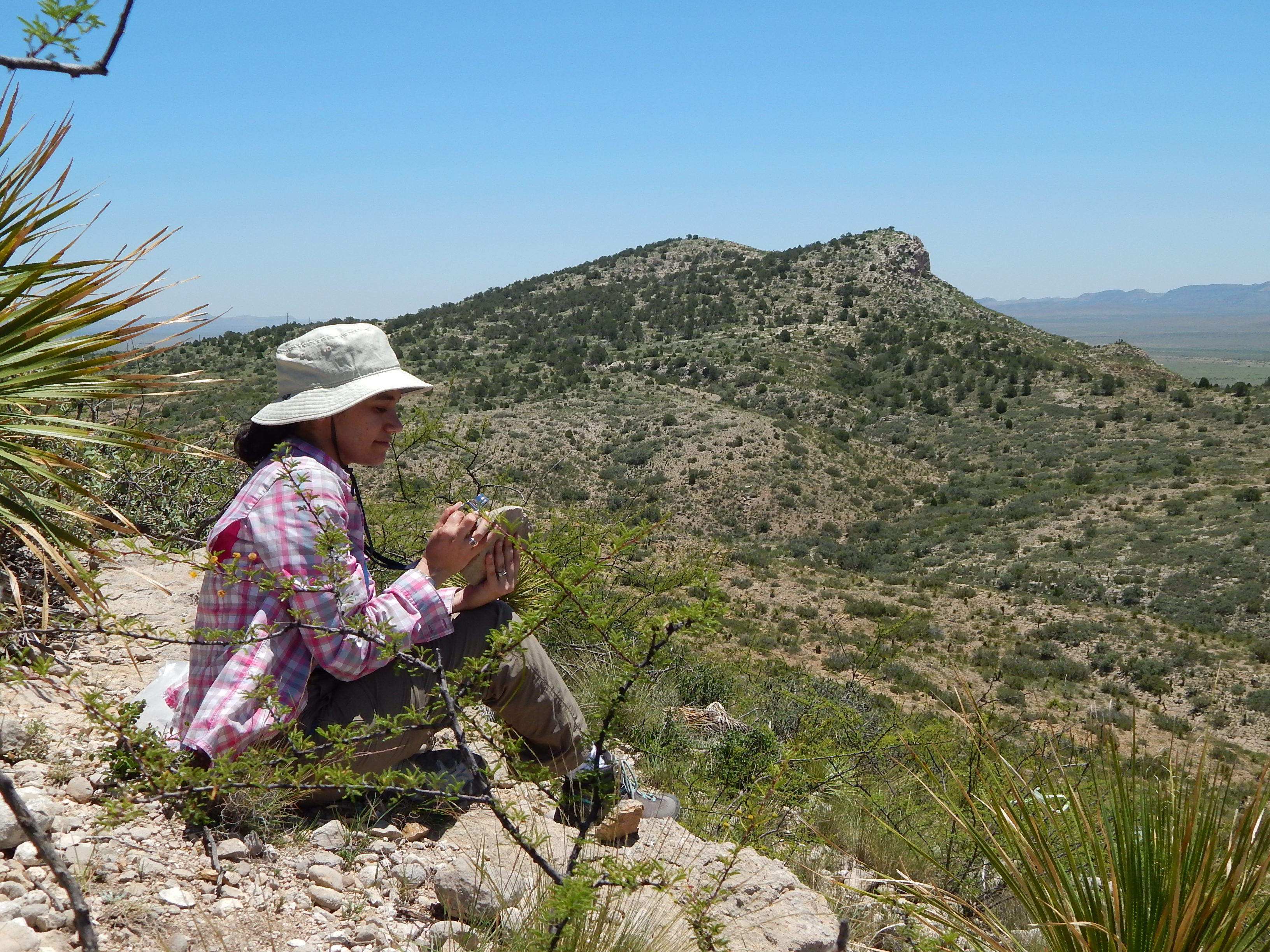 Sitting in Wolf Camp Hills looking for fusulinids and marine inverebrate in Permian limestones. Photo Credit: Eileah Simms. Taken July 2018.