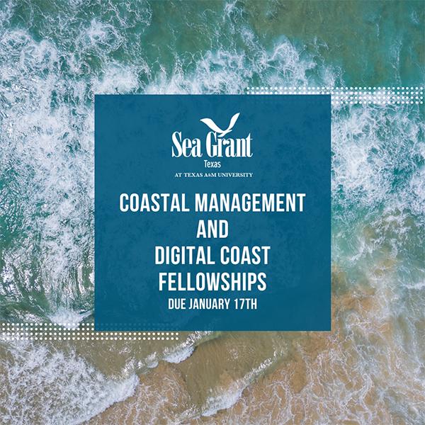 2020 Coastal Management and Digital Coast Fellowship Now Open thumbnail