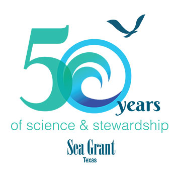 Texas Sea Grant Celebrates 50 Years of Science and Stewardship on Sept. 17 thumbnail