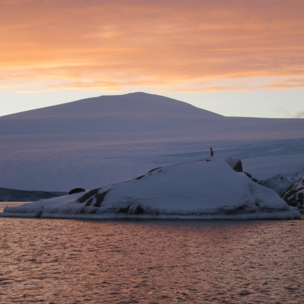 Aggie Professor Completes His 18th Antarctic Expedition thumbnail
