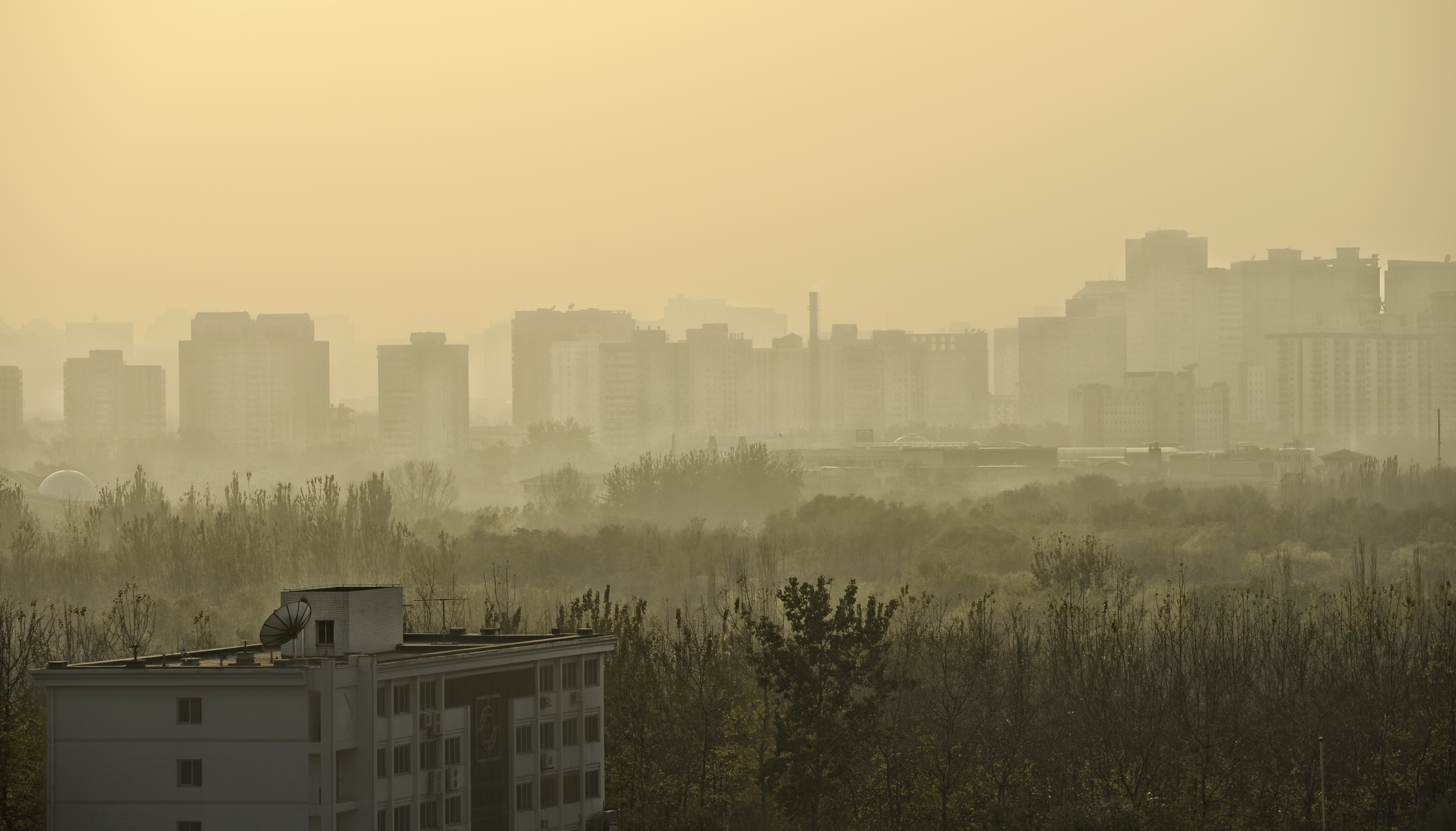 Texas A&M meteorology researchers part of Beijing pollution study