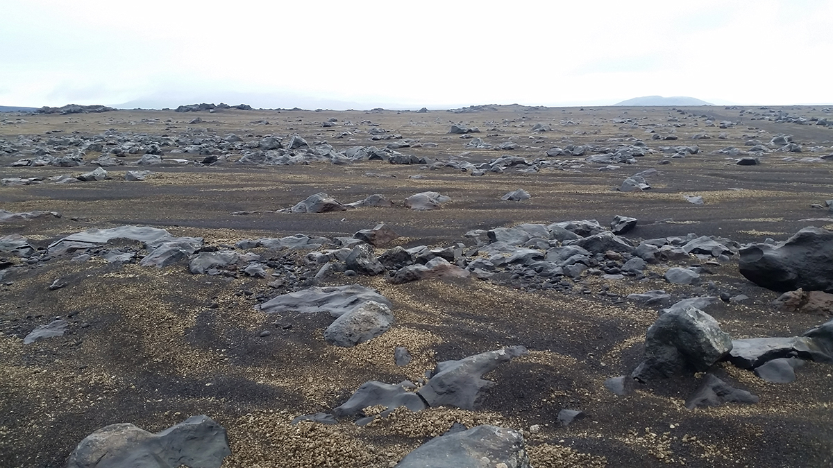 An example of terrain showing fluvial sorting in Iceland. (Photo by Ewan Reid.)