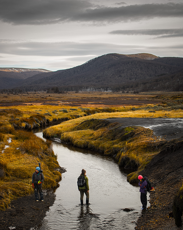 Texas A&M students and peatlands in Tierra del Fuego. (Photo by Patrick Campbell.)