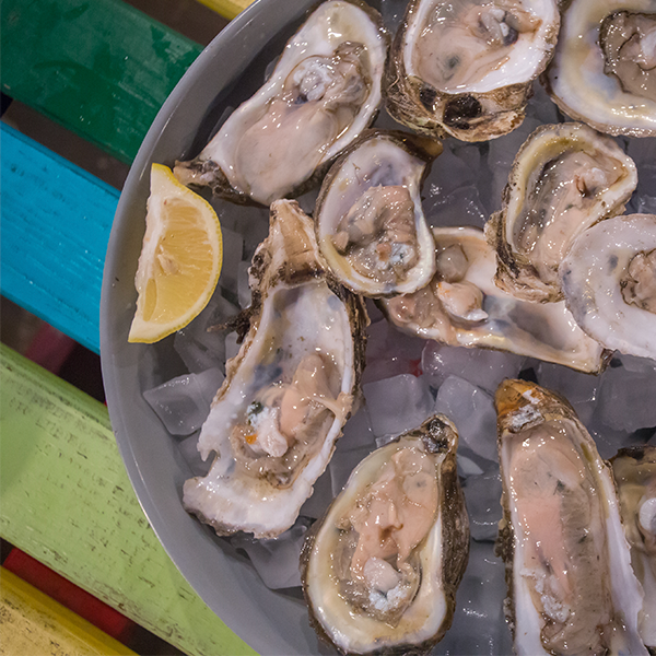 Texas Oyster Mariculture Stakeholder Meeting Slated For Jan. 25 thumbnail
